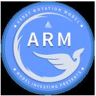 Model Investing - ARM Model