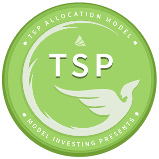 TSP Allocation Model (TSP)